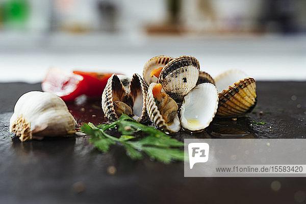 Nahaufnahme von Muscheln und Zutaten auf der Küchentheke