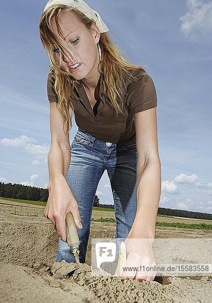 Deutschland  Bäuerin bei der Spargelernte