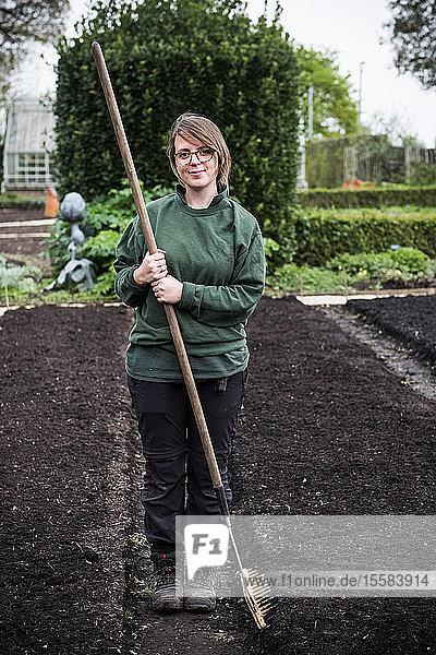 Lächelnde Frau  die einen hölzernen Rechen in der Hand hält  der in einem Gemüsegarten auf einem frisch gepflanzten Erdbett steht.