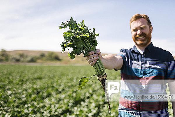 Smiling man holding vegetable crop in field