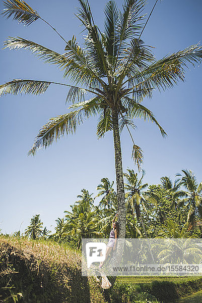 Woman leaning against palm tree in Bali  Indonesia