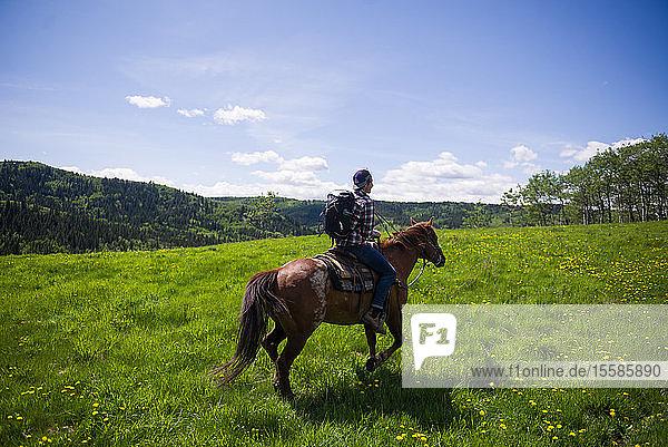 Reiter auf grüner Landschaft  Calgary  Kanada