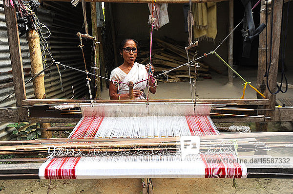 Village woman with domestic handloom  weaving a traditional Assamese cotton gamosa  white with red borders  Assam  India