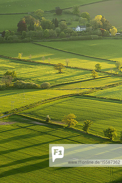 Lush rolling farmland in spring in the Brecon Beacons National Park  Powys  Wales  United Kingdom