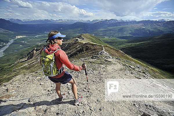 Female Hiker At The Top Of The Mt. Healy Overlook Trail In Denali National Park & Preserve  Interior Alaska  Summer