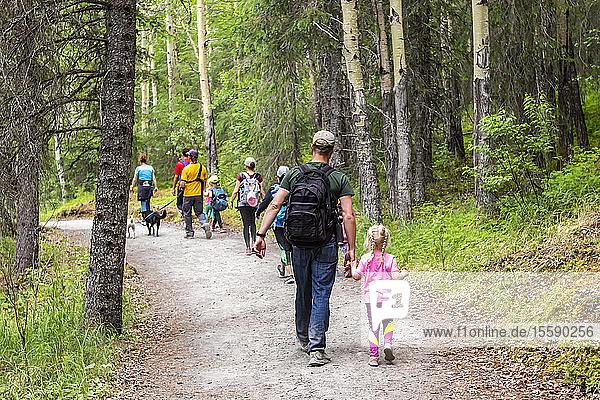 Hikers walk the trail to the Russian River Falls on the Kenai Peninsula  South-central Alaska; Alaska  United States of America