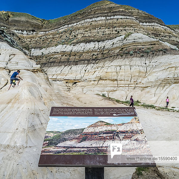 Tourists on Hoodoos Trail in the Canadian Badlands. Each hoodoo is a sandstone pillar resting on a thick base of shale that is capped by a large stone; Drumheller  Alberta  Canada