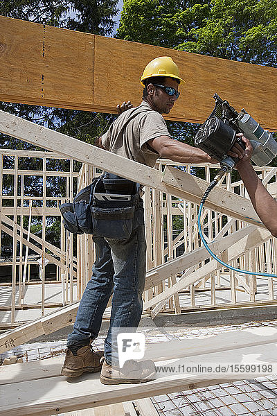 Carpenter preparing to nail a laminated beam in place
