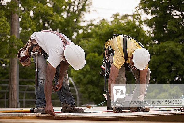 Carpenters working on a particle board