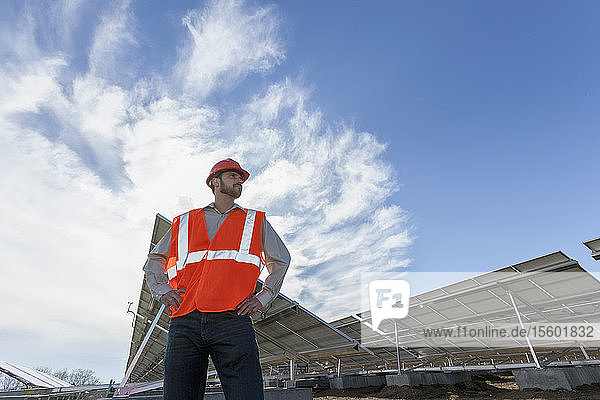 Power engineer standing in front of solar photovoltaic array