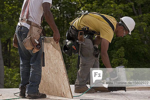 Carpenters nailing a particle board