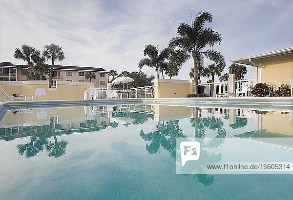 Swimming pool at a tourist resort  Florida  USA