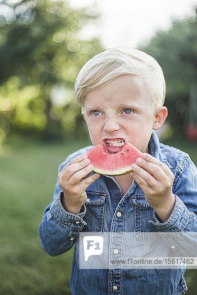 Boy looking away while eating watermelon in backyard