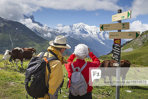 Senior couple taking pictures of view at La Balme  mountain farm in French Alps above Chamonix  Mont Blanc in background  Haute-Savoie  France