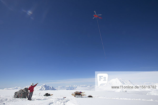 A helicopter is removing waste from a camp on Denali by sling load.