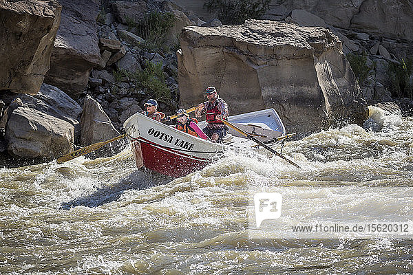 A Dory boat going through rapids in theï¾Desolation/Grayï¾Canyon section of the Green river  Utah  USA