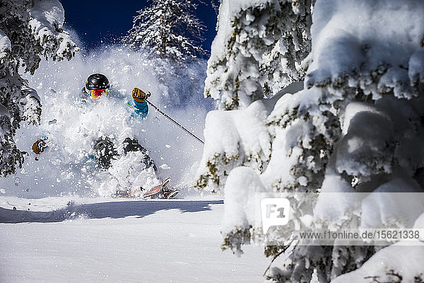 A man skiing powder at Alta  Utah
