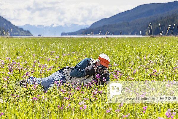 A man is photographing flowers in the grass in��Sitkoh��Bay  southeast Alaska  USA