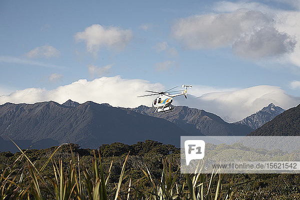 Helicopter flying over trees and mountains  South Island  New Zealand