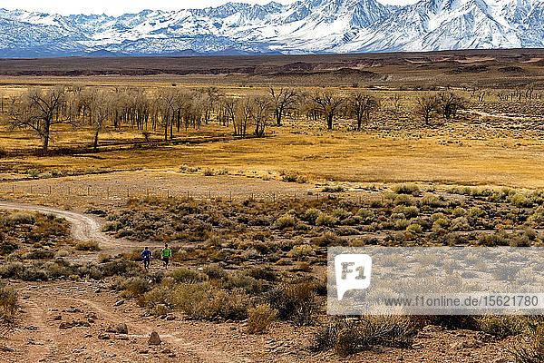 Man and woman trail running in the Owens Valley