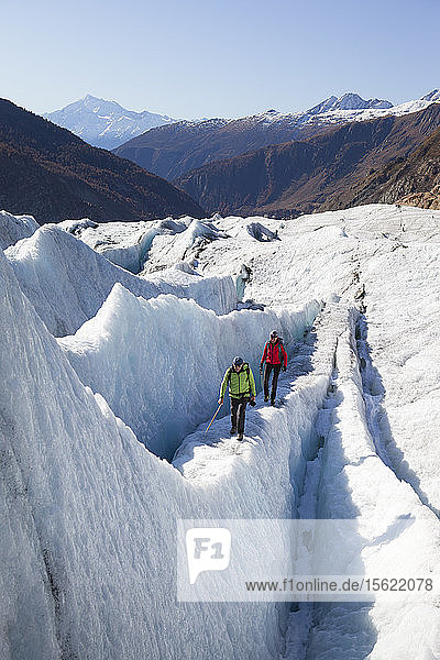 A mountain guide and his client are walking over an ice ridge of the Swiss Aletsch glacier  one of the largest ice streams in Europe  and the first Unesco World Heritage Site of the Alps. This huge river of ice that stretches over 23 km from its formation in the Jungfrau region (at 4000 m) down to the Massa Gorge in Wallis  around 2500 m below  fascinates and inspires every visitor.