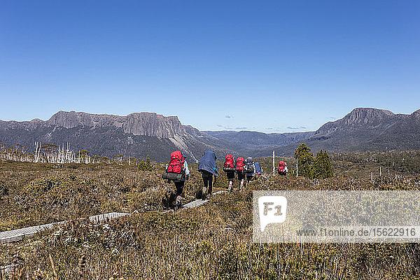 Hikers walk along the Overland Track near Mount Ossa in Tasmania's alpine wilderness.