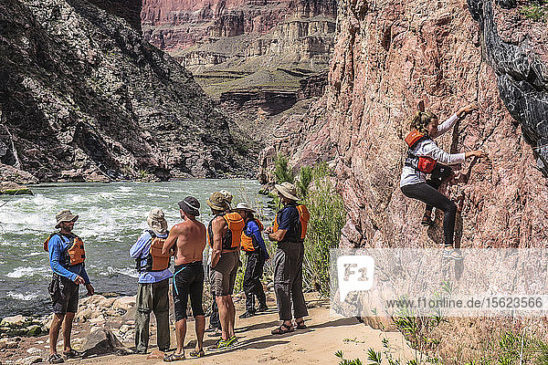 A young woman climbs a cliff face while waiting for her rafting group  Grand Canyon  CO