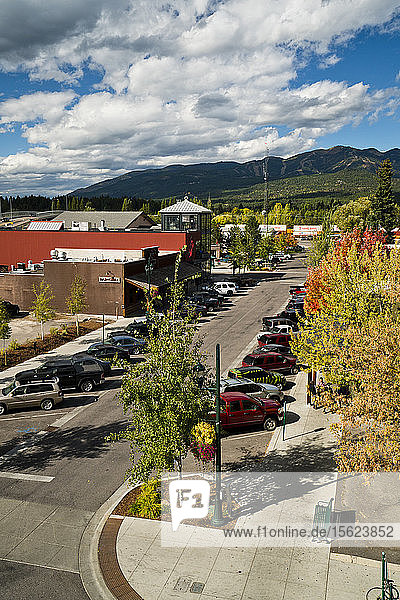 Fall foliage is seen on a sunny day in Whitefish  Montana.