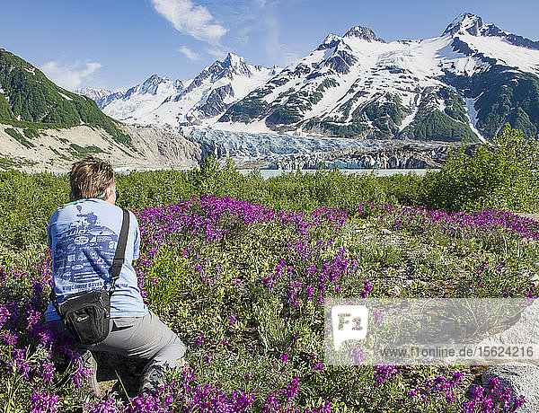 Photographer Taking Picture Of Wildflowers And The Walker Glacier