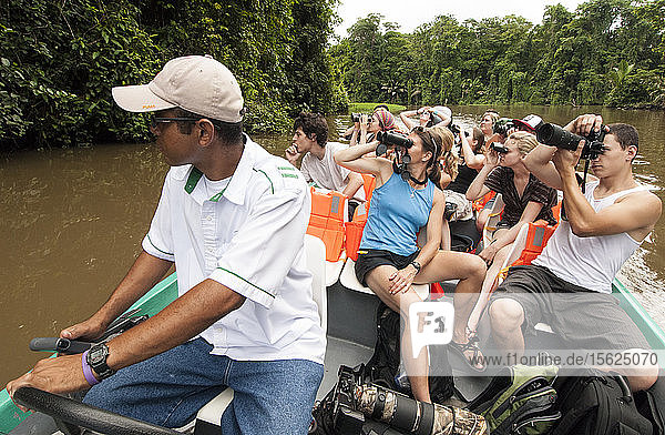 Tourists enjoying the canals looking for wildlife in Tortuguero National Park  Costa Rica.