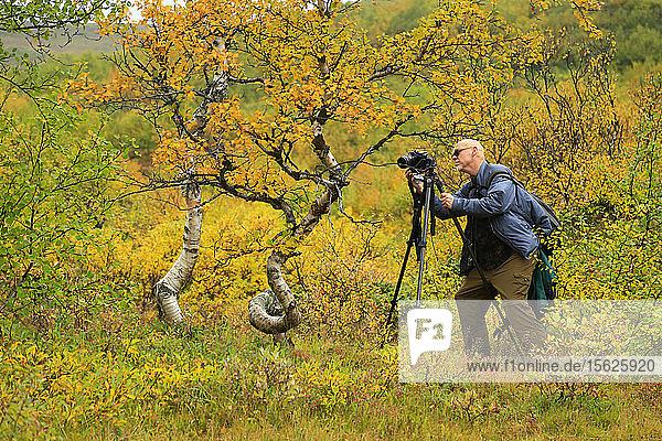 Photographer photographing the foliage  Hljodaklettar Jokulsargljufur Canyon  Iceland