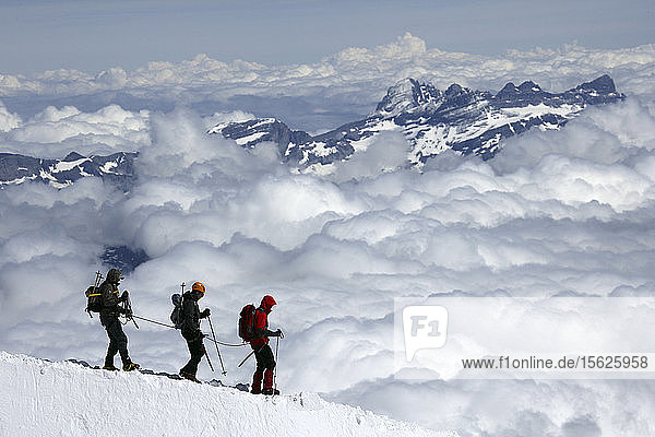 Mountaineers and climbers hiking on a snowy ridge  Aiguille du Midi  Mont Blanc Massif  Chamonix  French Alps  Haute Savoie  France