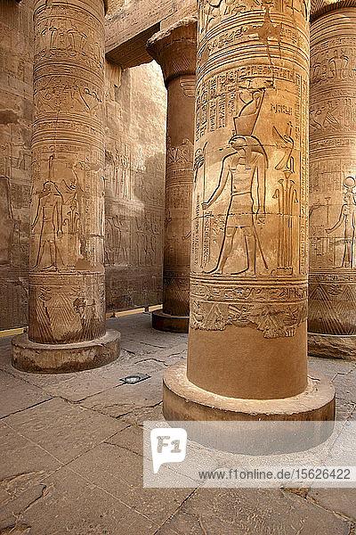 Ansicht der Schnitzerei auf den Säulen im Horustempel