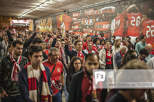 Football match of SL Benfica the home team against Bisktas  Lisbon  Portugal