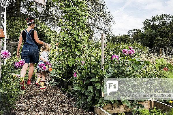 Mädchen und Frau gehen durch einen Garten und tragen Körbe mit rosa Dahlien.