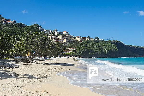 Scenic view of Grand Anse beach against blue sky during sunny day  Grenada  Caribbean