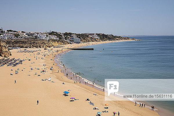 Panoramablick auf den Sandstrand von Albufeira  Algarve  Portugal