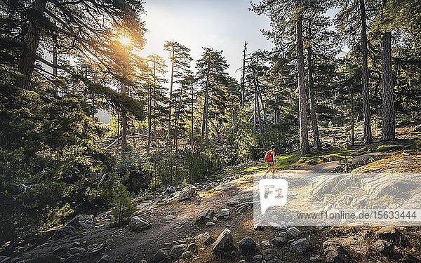 Wanderin während der Wanderung  Albertacce  Haute-Corse  Korsika  Frankreich