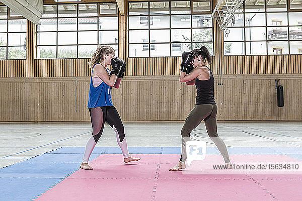 Female boxers practising in sports hall