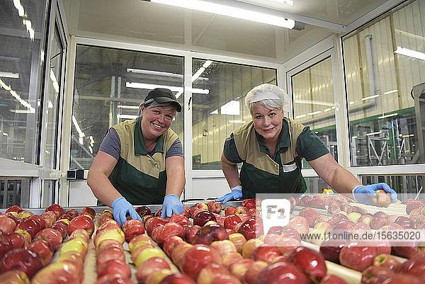 Arbeiterinnen kontrollieren Äpfel auf Förderband in Apfelsaftfabrik