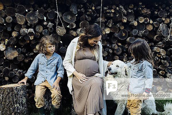 Schwangere Mutter mit zwei Kindern und Hund beim Entspannen am Holzstapel
