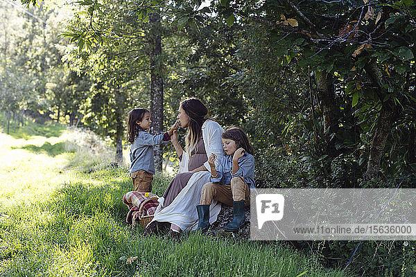 Schwangere Mutter mit zwei Kindern beim Picknick auf dem Land