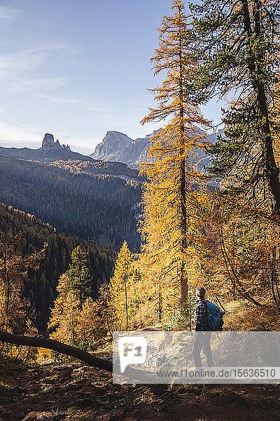 Wanderer geniessen die Dolomiten im Herbst  Venetien  Italien
