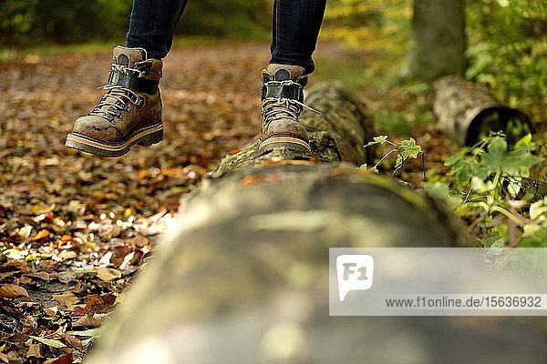 Niedriger Teil einer Frau  die im Herbst im Wald auf einem Baumstamm balanciert
