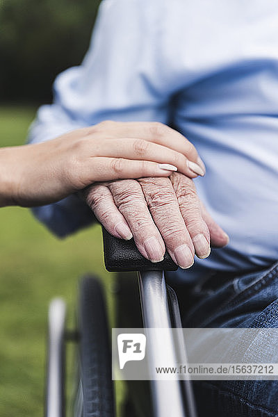 Young woman touching senior man's hand  close-up