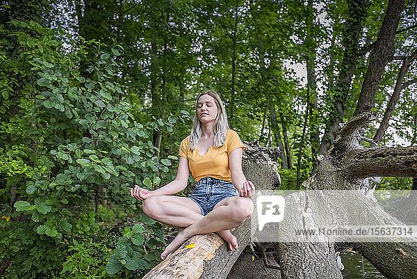 Junge Frau meditiert an einem Baumstamm am Seeufer