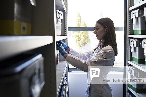 Seitenansicht einer Frau in weißer Robe  die eine Schachtel mit Proben in einem Regal im Labor aufbewahrt