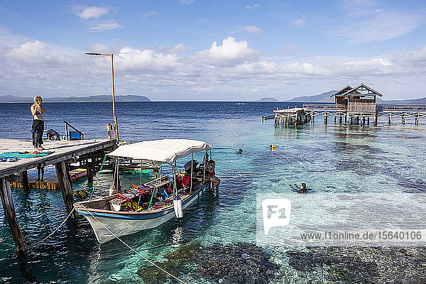 Pier over the coral reef; Arborek  West Papua  Indonesia
