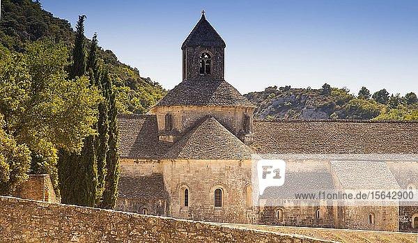 Die romanische Zisterzienserabtei Abbaye Notre-Dame de Sénanque  bei Gordes  Provence  Frankreich  Europa