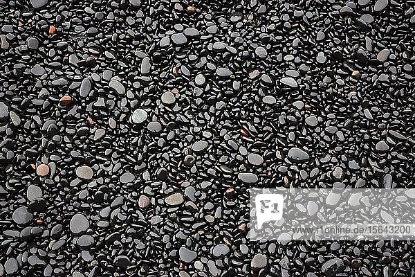 Schwarze Lavakiesel am Reynisfjara Strand  bei Vik  Südisland  Island  Europa